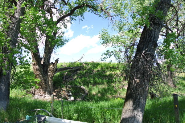 2+- ACRE BUILDING LOT OVERLOOKING MISSOURI RIVER NEAR GREAT FALLS